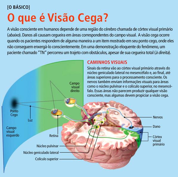 forwebsite_cego01