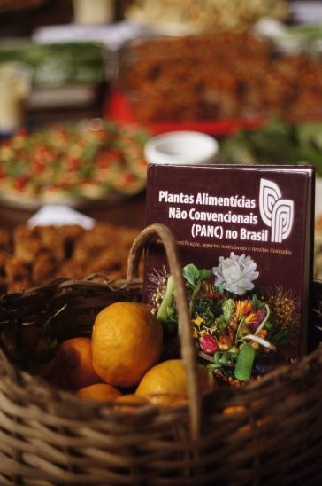 Banquete de PANCs feito por Marilia Kelen e Luíza Machado