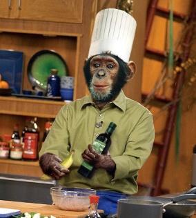 macaco-cozinhando-grande