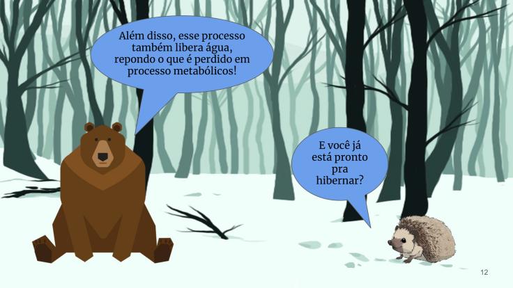 Hibernação-12