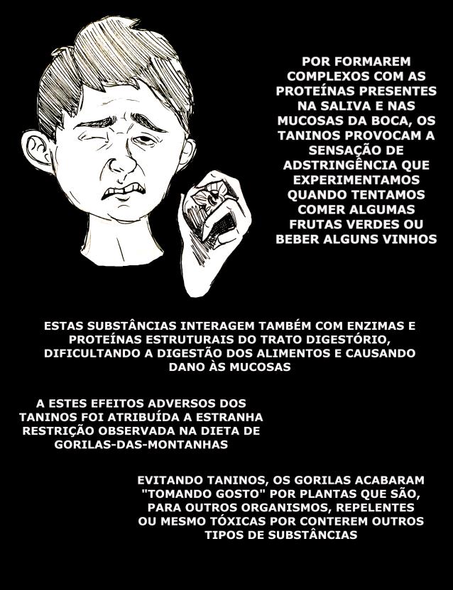 taninos_4