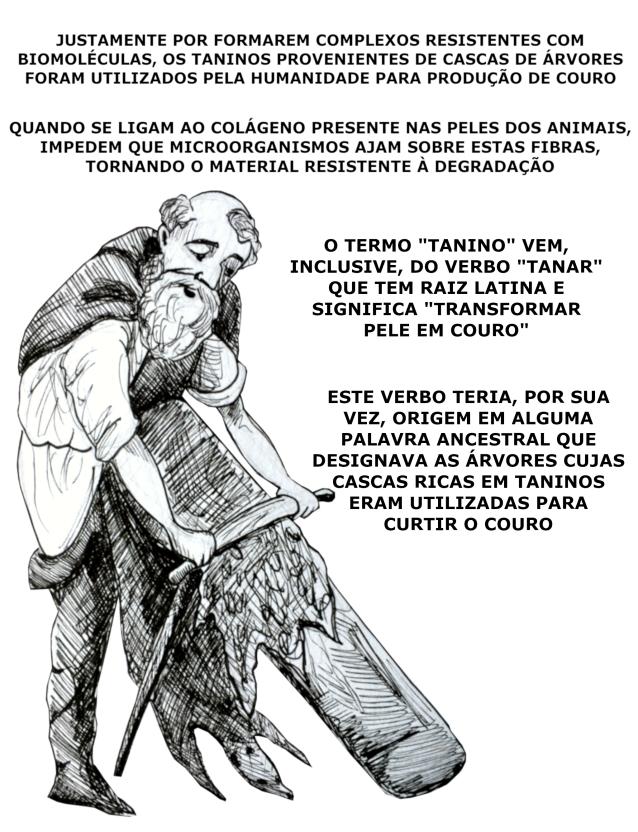taninos_7