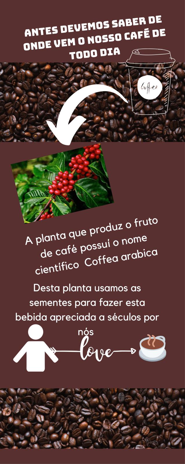 Cafeína bioquimica (1)-2