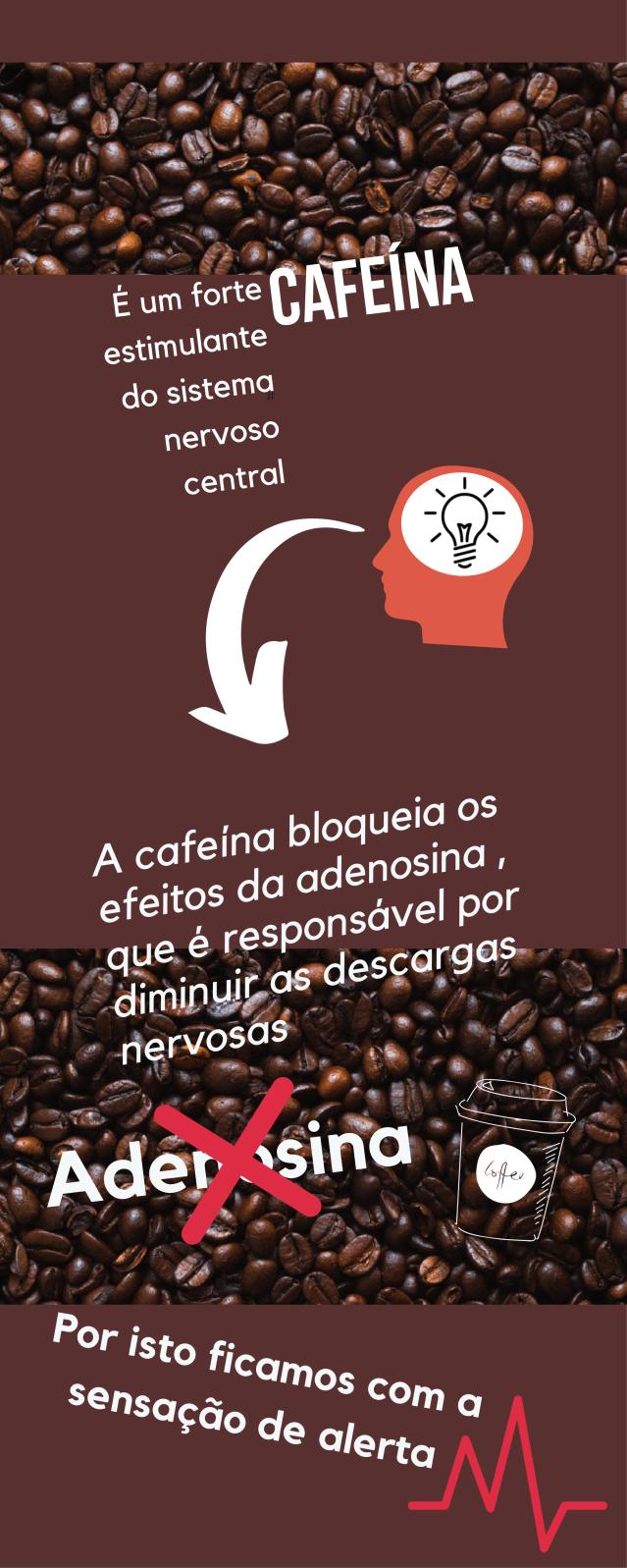 Cafeína bioquimica (1)-4